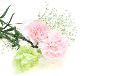 babys: Bouquet of carnation and babys breath