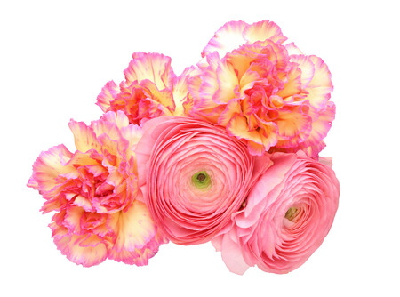 persian buttercup: Bouquet of carnation and persian buttercup Stock Photo