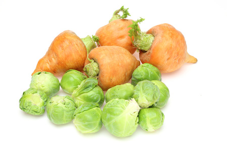 brussels sprouts: Brussels sprouts and carrot in a white background
