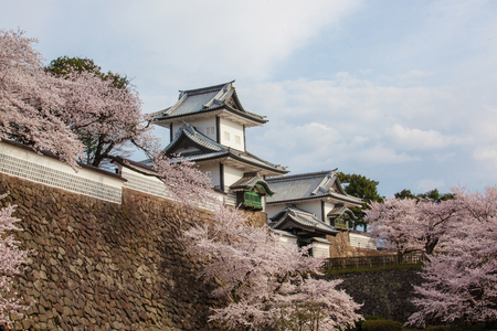 Japanese castle 版權商用圖片