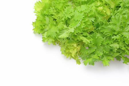 the greens: Wasabi greens Stock Photo
