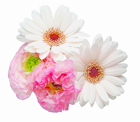persian buttercup: Bouquet of persian buttercup and transvaal daisy