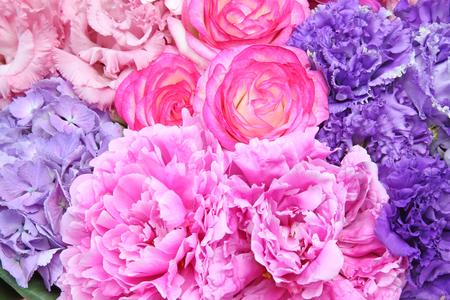 gentian flower: Flower background