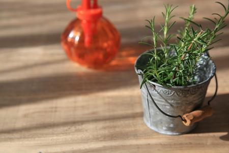 tin: Rosemary in tin can