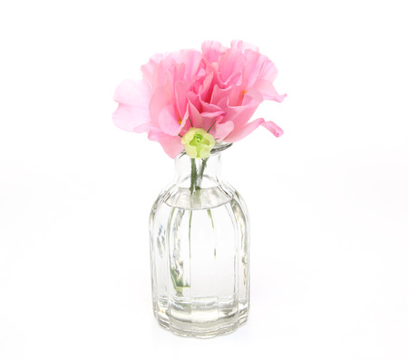 Eustoma in a glass vase Stock Photo
