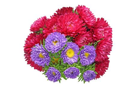 アスターの花束
