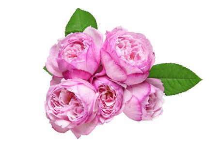 白バラの分離の花束