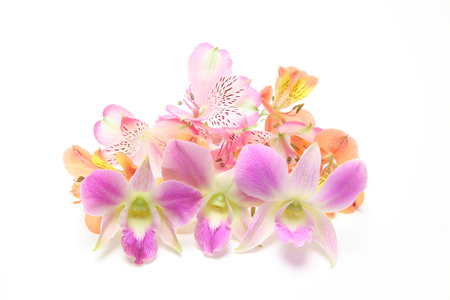 Flower head of alstroemeria and orchid