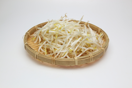 bean sprout on the bamboo colander