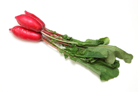 red radishes in a white background