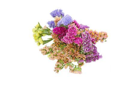 bouquet de statice dans un fond blanc Banque d'images
