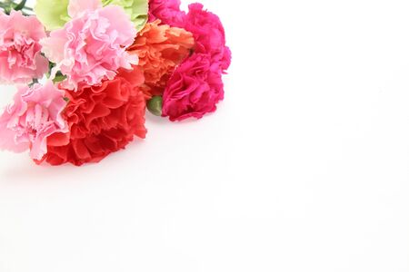 bouquet of carnation in a white background