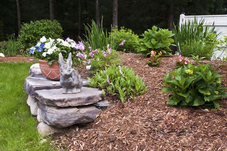 coral bark: Spring Garden with Rock Wall