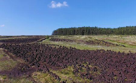 Turf on Slieveanorra Mountain Glenariff Glenariffe Waterfoot Co.Antrim Northern Ireland ireland Dunluce Castle Co. Antrim Northern Ireland n.i. rathlin island gles of antrim green glens Imagens