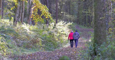 Walkers in Glenarm Forest Co Antrim Northern Ireland