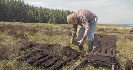 Cutting Turf Peat by spade in a Moss Bog in Ireland Imagens