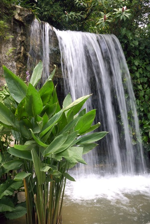 Feng shui designed waterfall low angle view photo