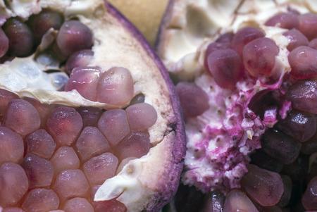 antioxidant: Antioxidant Purple Pomegranate Fruit Stock Photo