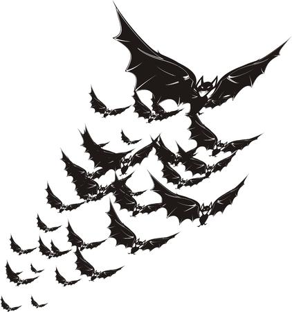 halloween bat 向量圖像