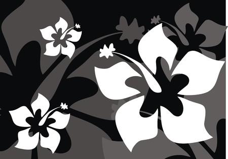 ibiscus: sfondo fiore tropicale  Vettoriali