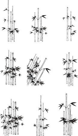 bamboo set Stock Vector - 9592418