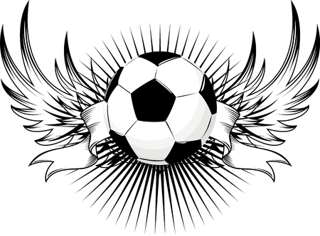 soccer goal: winged soccer ball design