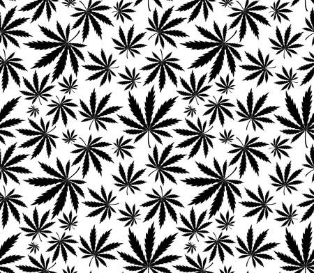 marihuana leaf: patr�n transparente de cannabis