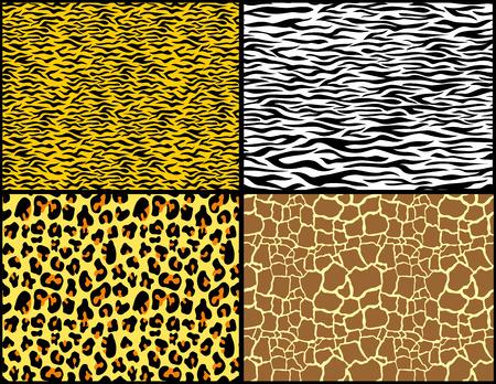 animal print patterns  向量圖像