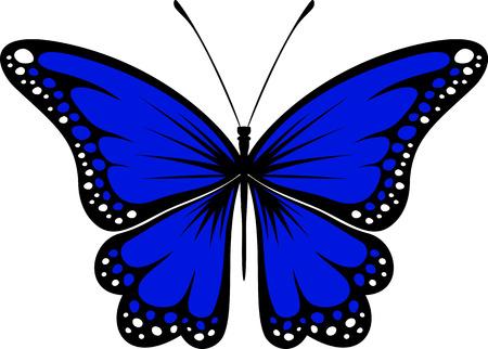 butterfly tattoo: dise�o de mariposa aislada sobre fondo blanco