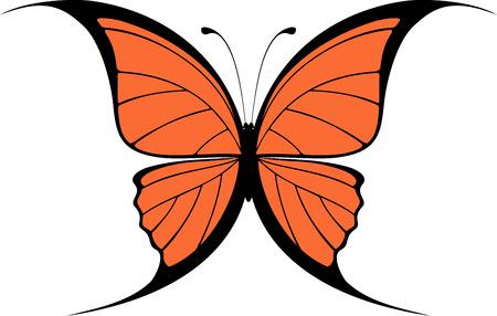 conception de papillon Vecteurs