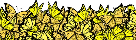 butterfly background: butterflies border, individual objects in vector format
