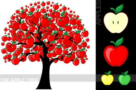 Illustratie van een cartoon appelboom op een witte achtergrond, zeer nuttig voor verschillende concepten (gebruikte lettertype is een