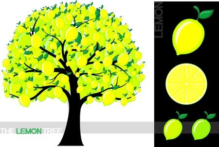 Illustratie van een cartoon citroen boom op een witte achtergrond, zeer nuttig voor verschillende concepten (gebruikte lettertype is een