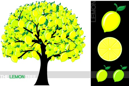 Illustration of a cartoon lemon tree isolated on white background, very useful for several concepts (font used is a