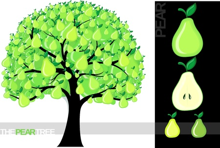 Illustration of a cartoon lemon tree isolated on white background, very useful for several concepts (font used is a  Vector