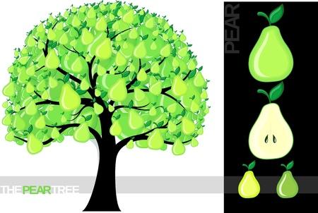 limon caricatura: Ilustración de un árbol de caricatura limón aislado sobre fondo blanco, muy útil para varios conceptos (fuente utilizada es un  Vectores