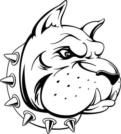 bulldog: vector de imagen de la cabeza de la mascota del equipo de toro perro aislado en fondo blanco