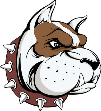 vector image of head of bull dog team mascot isolated on white background