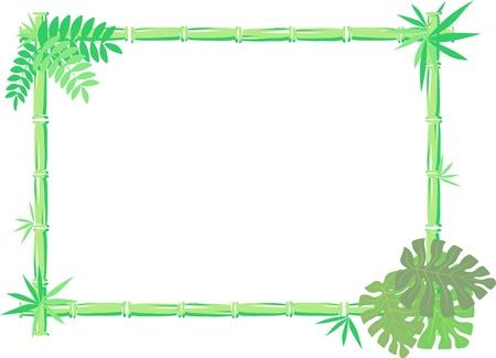 selva: imagen del vector de marco de bamb� aisladas sobre fondo blanco, los objetos individuales muy f�ciles de editar Vectores