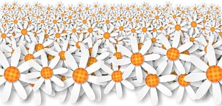 illustration of white flowers daisies 版權商用圖片