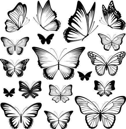 set of butterflies silhouettes isolated on white background in vector format very easy to edit, individual objects 版權商用圖片 - 19547180