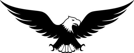 image of eagle design isolated on white background Фото со стока