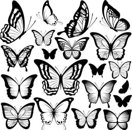 butterflies black silhouettes isolated on white background Vectores