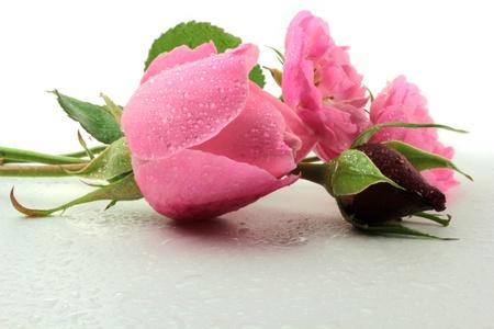 水滴をバラ