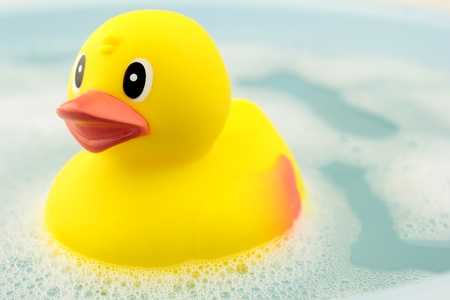rubber duck photo