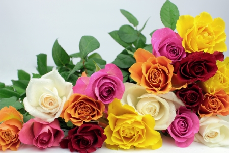 Colorful rose bunch photo