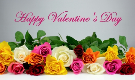 Colorful roses and   Happy Valentine s Day   text photo