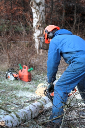 Man cutting wood with chainsaw, protective safety clothes photo