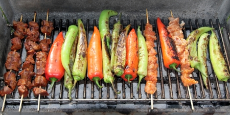 Shish kebab with red and green peppers on hot grill  photo