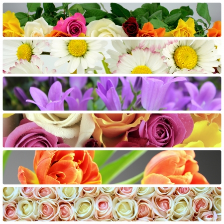 birthday flowers: Flower collage Stock Photo